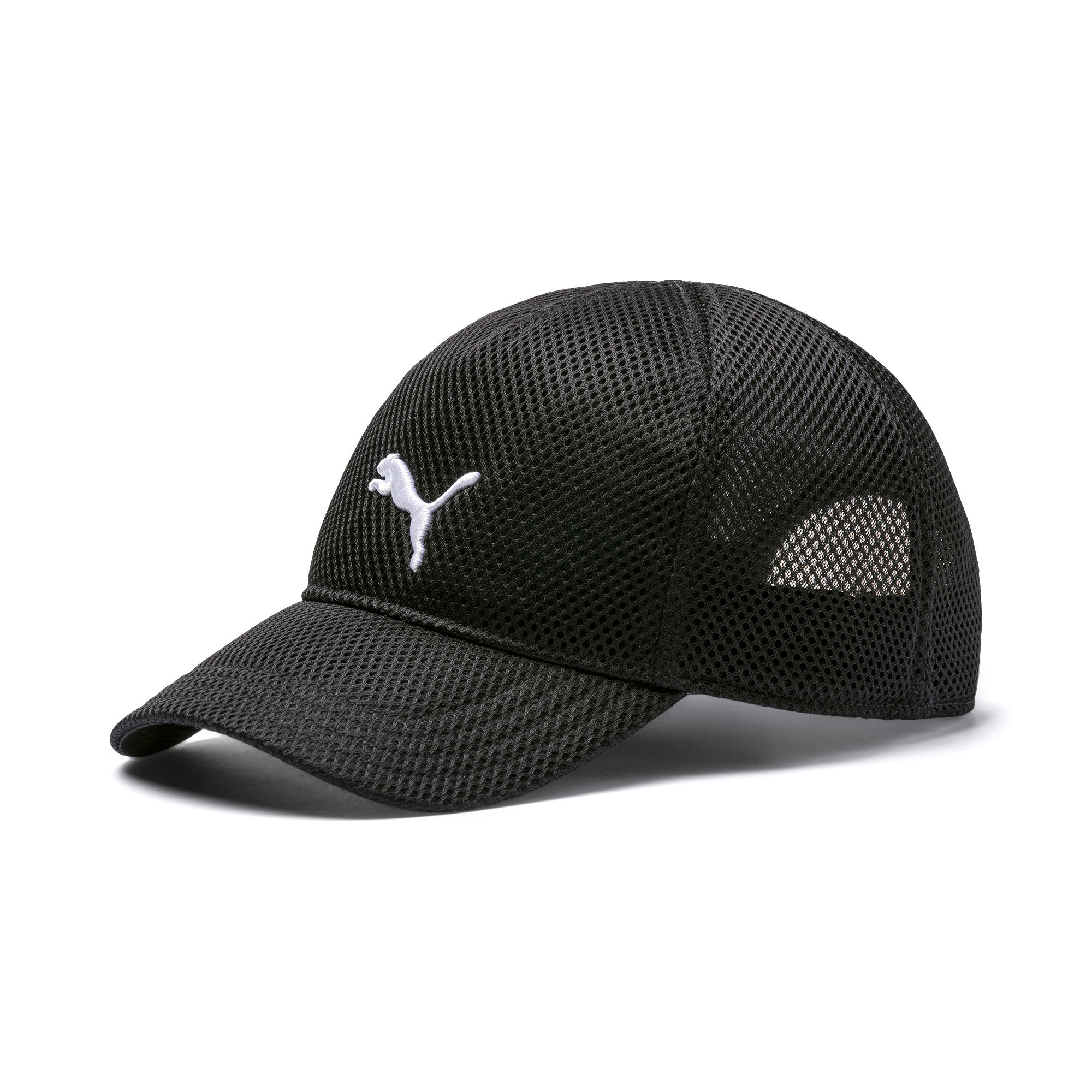 c79dfdb0ca Training Mesh Cap