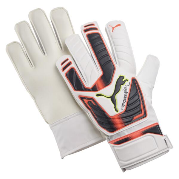 evoPOWER Grip 4 Goalkeeper Gloves, 01, large