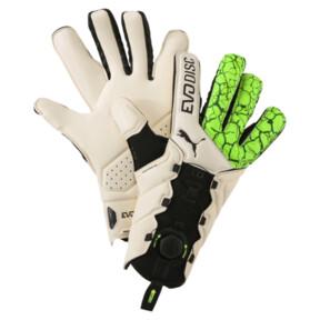 Thumbnail 1 of evoDISC GK Goalkeeper Gloves, 01, medium