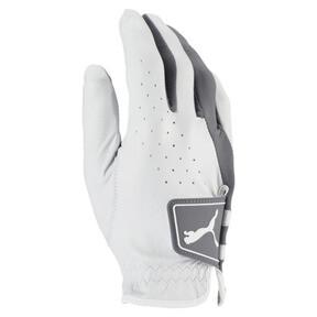 Thumbnail 1 of Golf Men's Pro Formation Right Hand Glove, Bright White-QUIET SHADE, medium