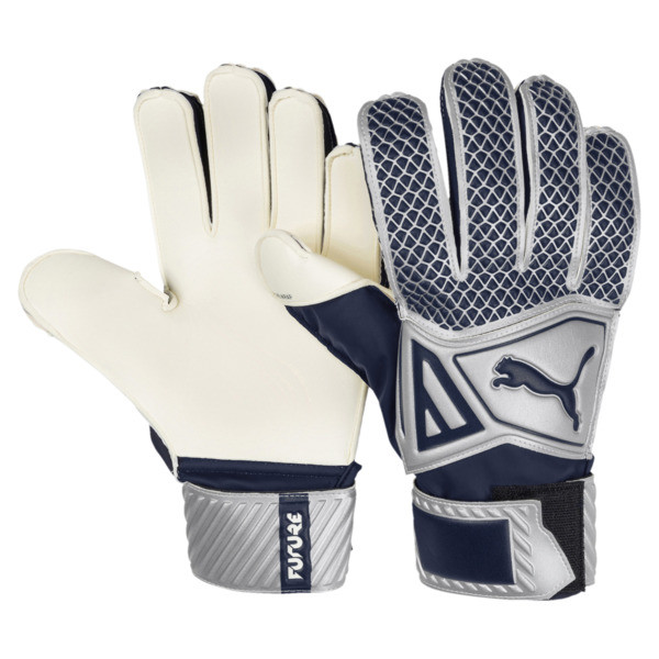 FUTURE Grip 2.4 Kids' Goalkeeper Gloves, Silver-Peacoat, large