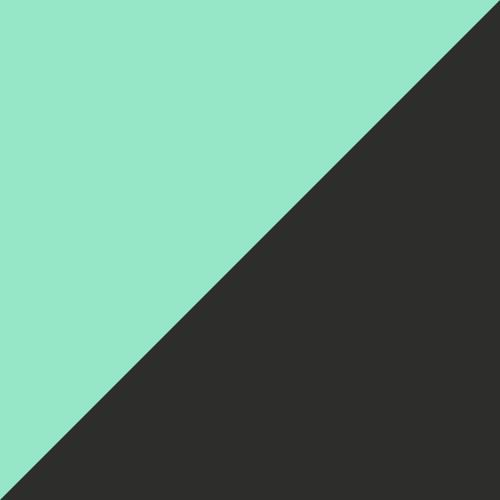 Puma Black-Green Glimmer