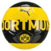 Görüntü Puma BVB Fan Antrenman Topu #1
