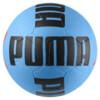 Imagen PUMA 365 R ball #2