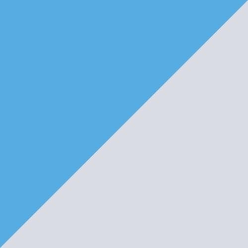 Team Light Blue-Tillandsia