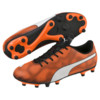 Görüntü Puma RAPIDO FG Futbol Erkek Krampon #2