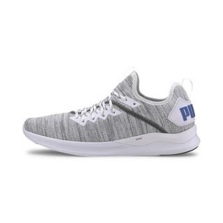 Image PUMA IGNITE Flash evoKNIT Men's Training Shoes