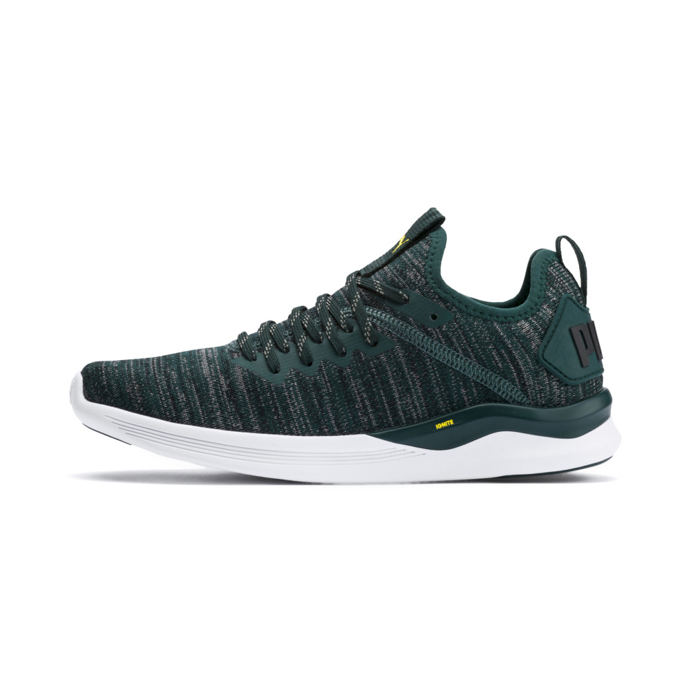 Image Puma IGNITE Flash evoKNIT Kids' Running Shoes #1