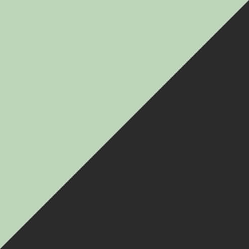 Puma Black-Elektro Green