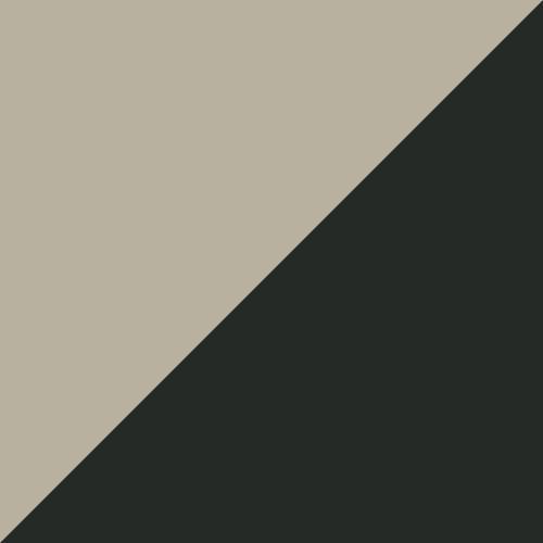 Thyme-Thyme-Team Gold-White