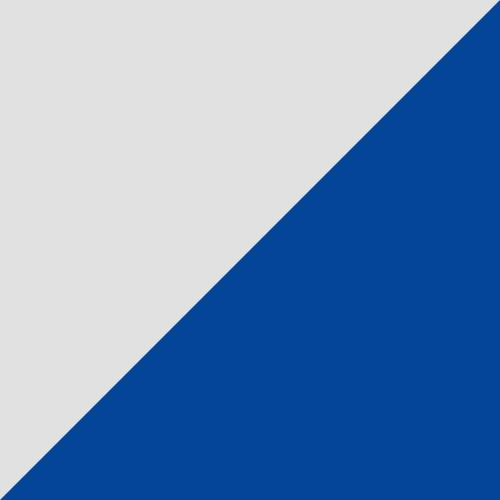 Puma White-Palace Blue