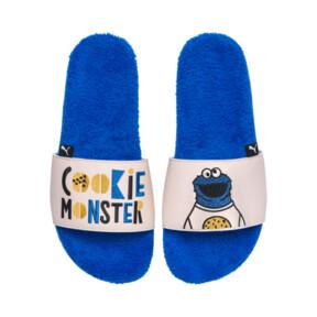 Sesame Street 50 Leadcat Slides JR