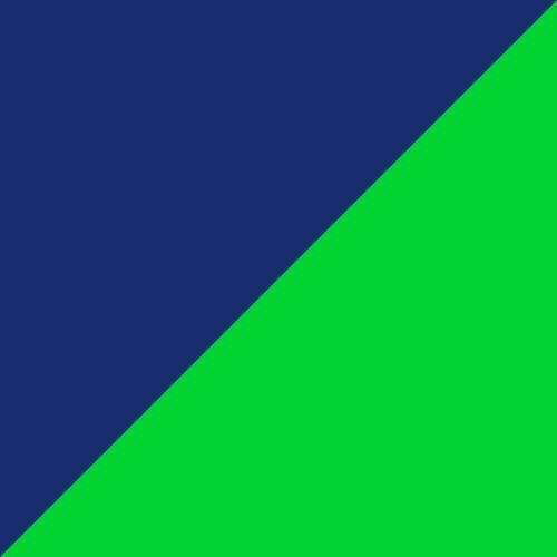 P.Black-Fl Green-Dazzling B.