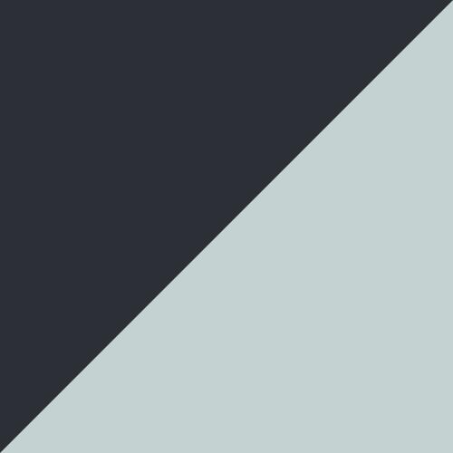 Puma Black-ARUBA BLUE