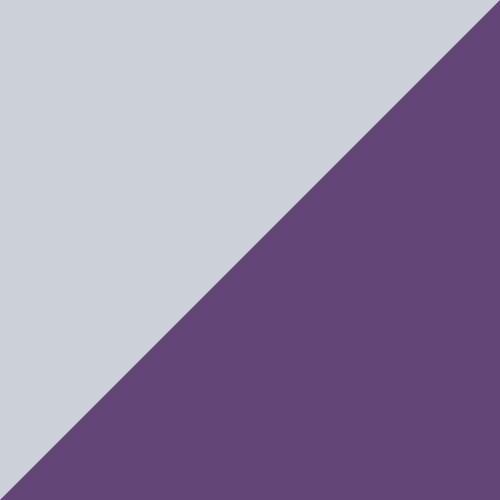 Prism Violet-Spectra Yellow