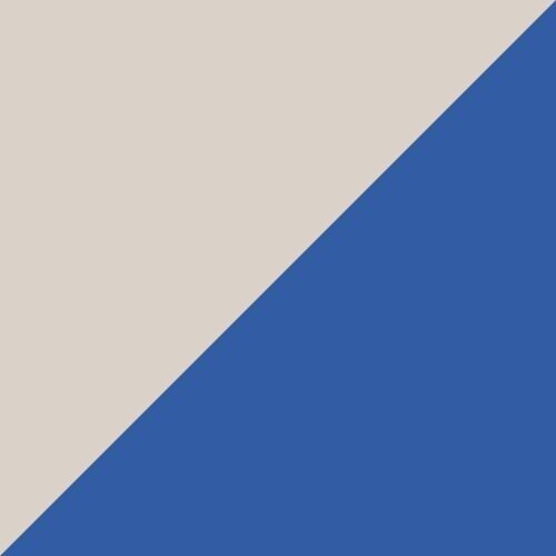Bluemazing-Dragon Fire