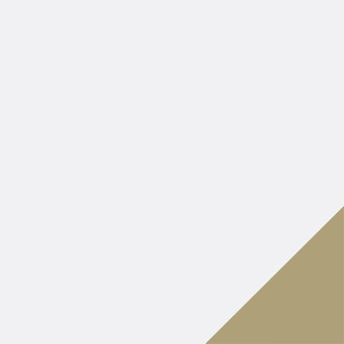 Puma White--Gold