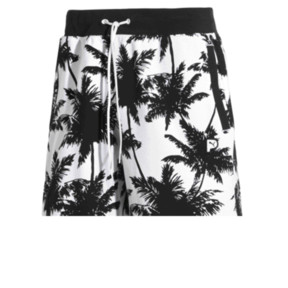 Palm Tree Men's Shorts