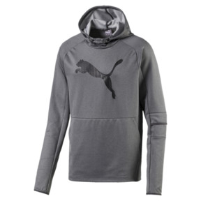 Tec Sports Cat Men's Hoodie