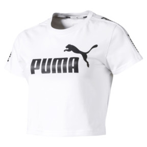 Amplified Women's Fitted Logo Tee