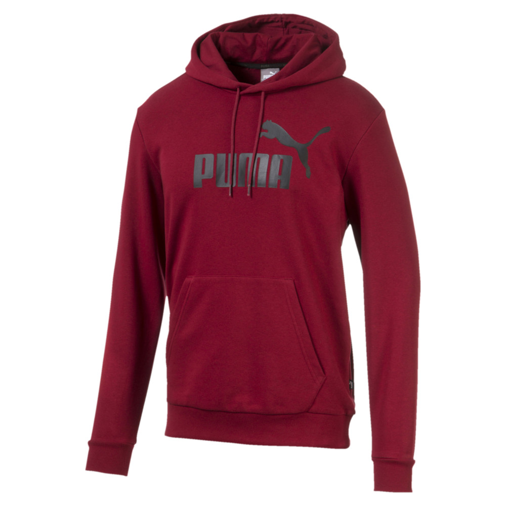 Image Puma Essentials Big Logo Men's Hoodie #1