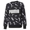 Image PUMA Alpha Crew Neck Youth Sweatshirt #1