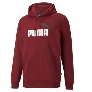 Image PUMA Essentials+ Two-Tone Big Logo Men's Hoodie