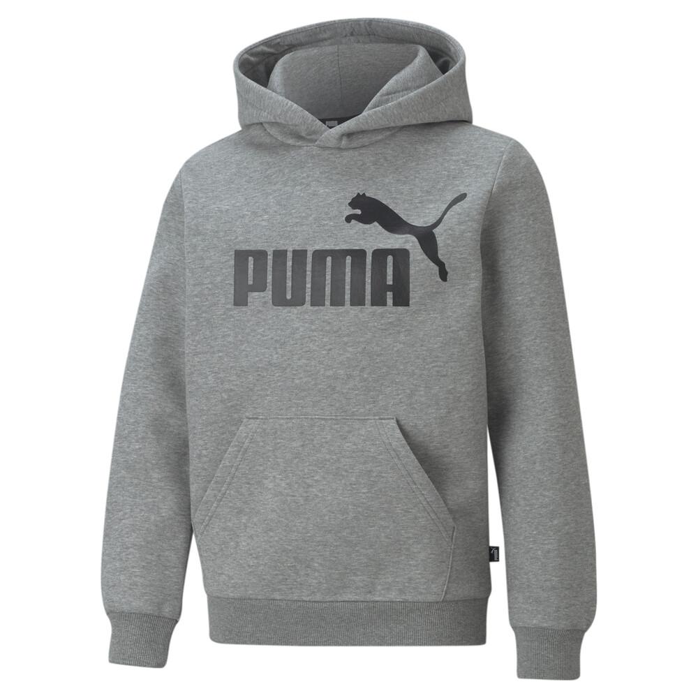 Image PUMA Essentials Big Logo Youth Hoodie #1