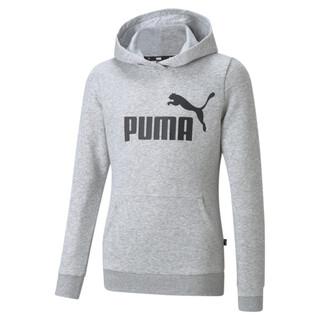 Image PUMA Essentials Logo Youth Hoodie