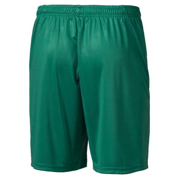 Liga Core Men's Football Shorts, Pepper Green-Puma White, large
