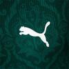Image PUMA Camisa Palmeiras I Masculina #4