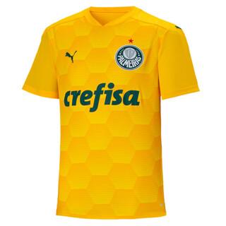Image PUMA Camisa Goleiro Palmeiras I Masculina