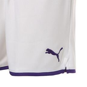 Thumbnail 5 of マンチェスター・シティ MCFC レプリカショーツ, Puma White-Tillandsia Purple, medium-JPN