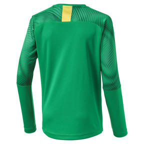 Thumbnail 2 of BVB Boys' Replica Goalkeeper Jersey, Bright Green, medium