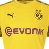 Image PUMA Camisa de Treino BVB Masculina #10