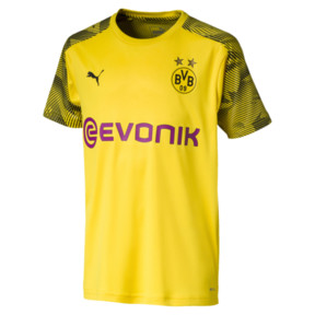 BVB Boys' Training Jersey JR