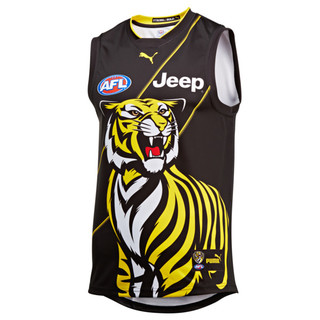 Image PUMA Richmond Football Club Men's Training Guernsey