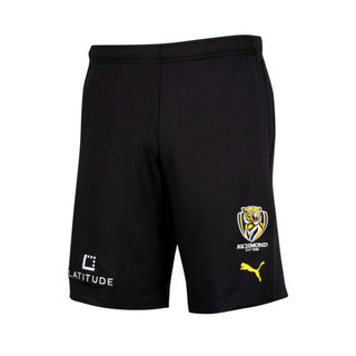 Image PUMA Richmond FC Training Shorts
