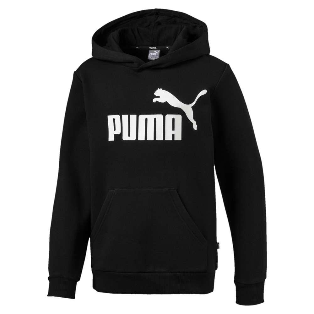 Image PUMA Essentials Boys' Hoodie #1