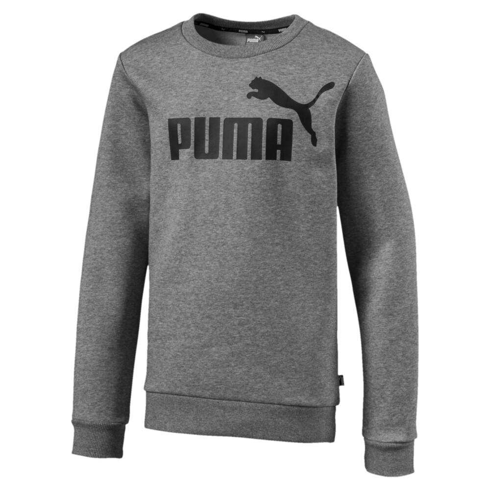Image Puma Essential Logo Boys' Sweater #1