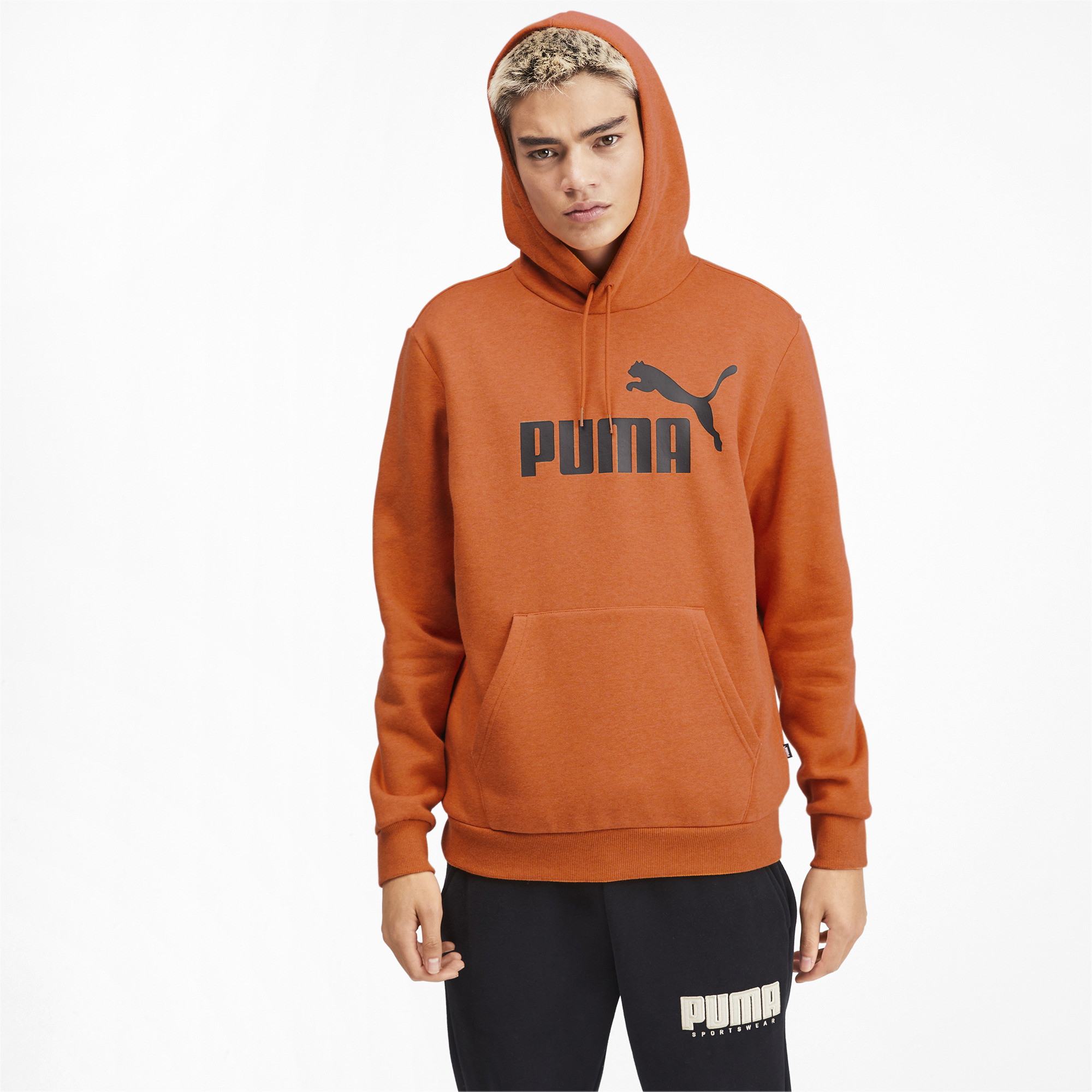 PUMA-Essentials-Men-039-s-Fleece-Hoodie-Men-Sweat-Basics thumbnail 28