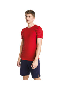 Image Puma Evostripe Move Men's Tee