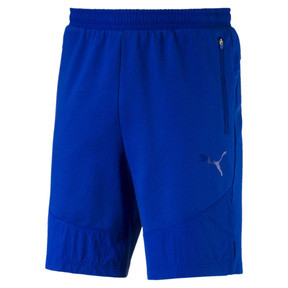 Evostripe Lite Men's Shorts