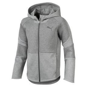 Thumbnail 1 of Evostripe Boys' Hoodie, Medium Gray Heather, medium