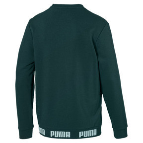 Thumbnail 5 of Amplified Men's Sweater, Ponderosa Pine, medium