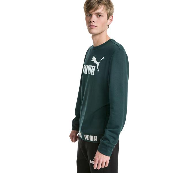 Amplified Men's Sweater, Ponderosa Pine, large