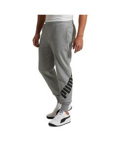 Image Puma Big Logo Men's Pants