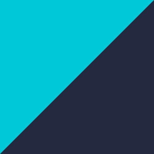 aqua / blue