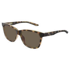 Thumbnail 1 of Sunglasses, HAVANA-HAVANA-BROWN, medium