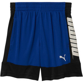 Boy's Poly Interlock Performance Shorts INF